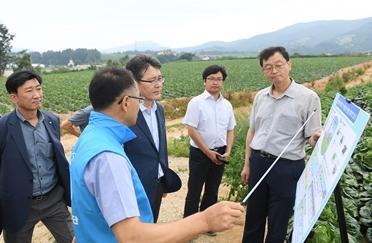 aT, 준고랭지 배추 포전 현장점검 및 드론 이용 농산물 작황상황 시연